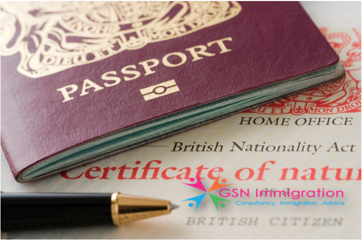 immigration pros consultancy service reviews