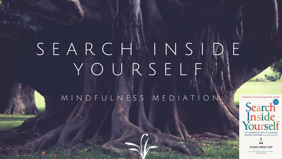 search inside yourself book review