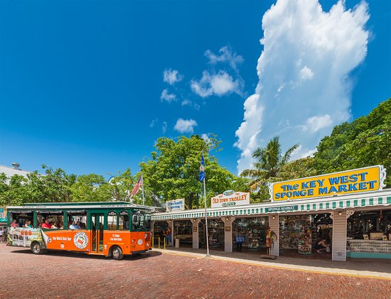 key west trolley tours reviews