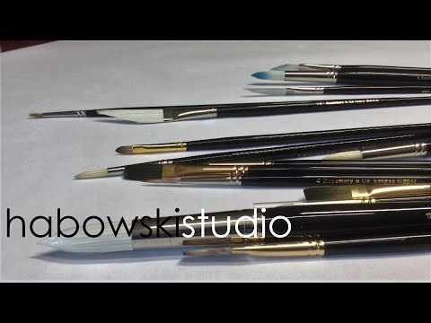 rosemary and co brushes reviews